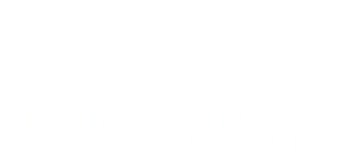 The Bridge Project Tadcaster Logo